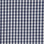 Blue_and_White_Gingham