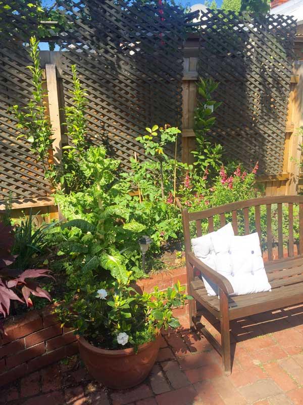 lattice-garden-fence