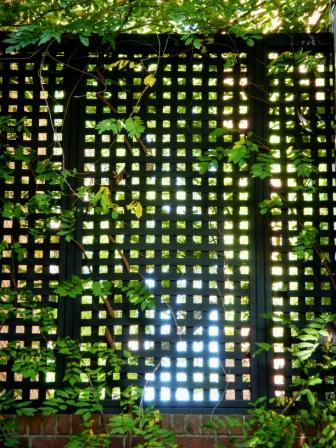 lattice02